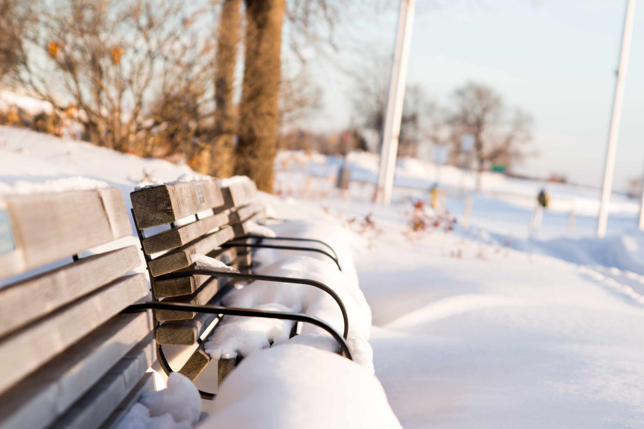 Benches by the waterfront covered in snow.