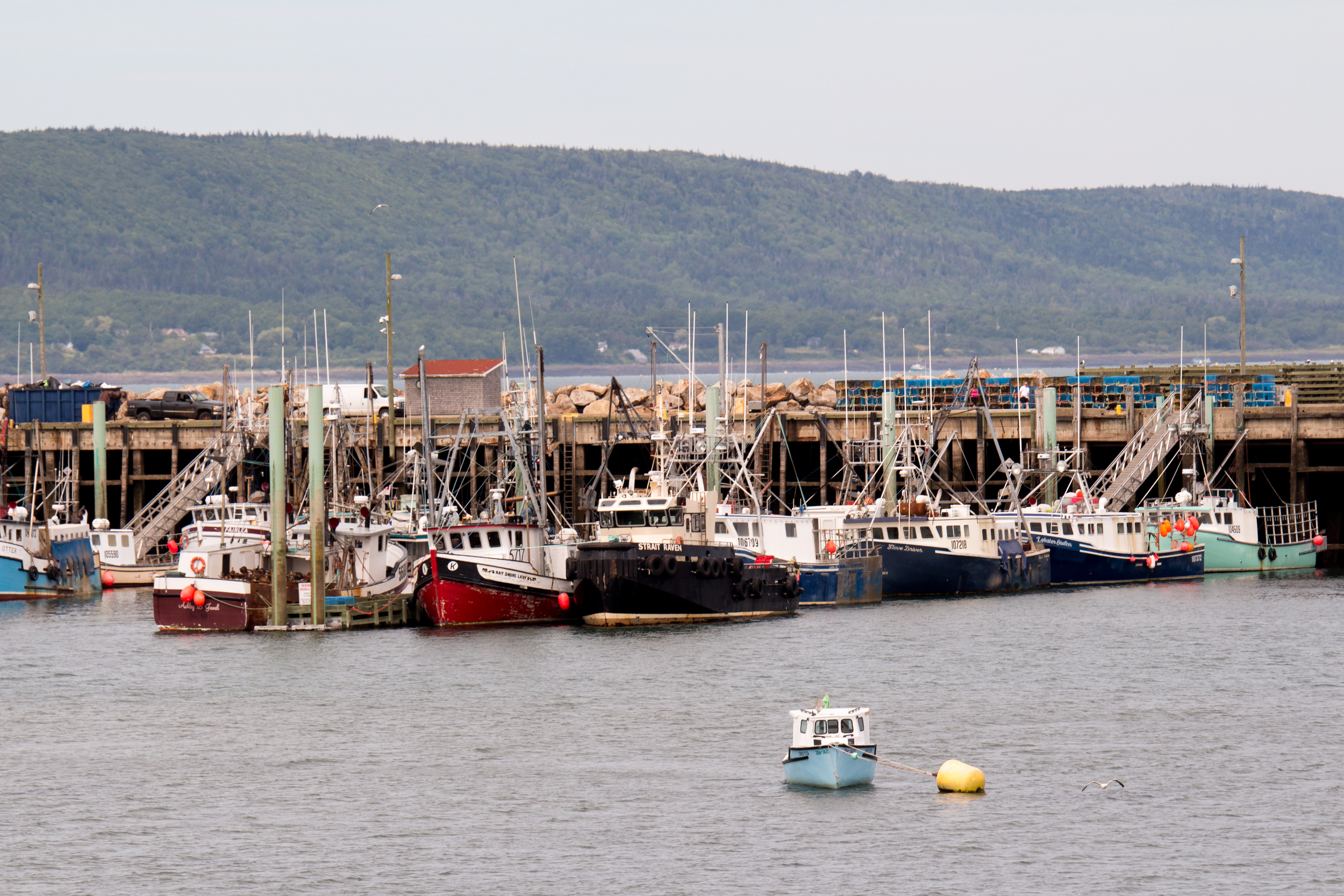 Digby, Nova Scotia.
