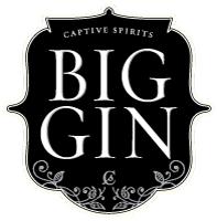 BigGin_Logo_S.JPG