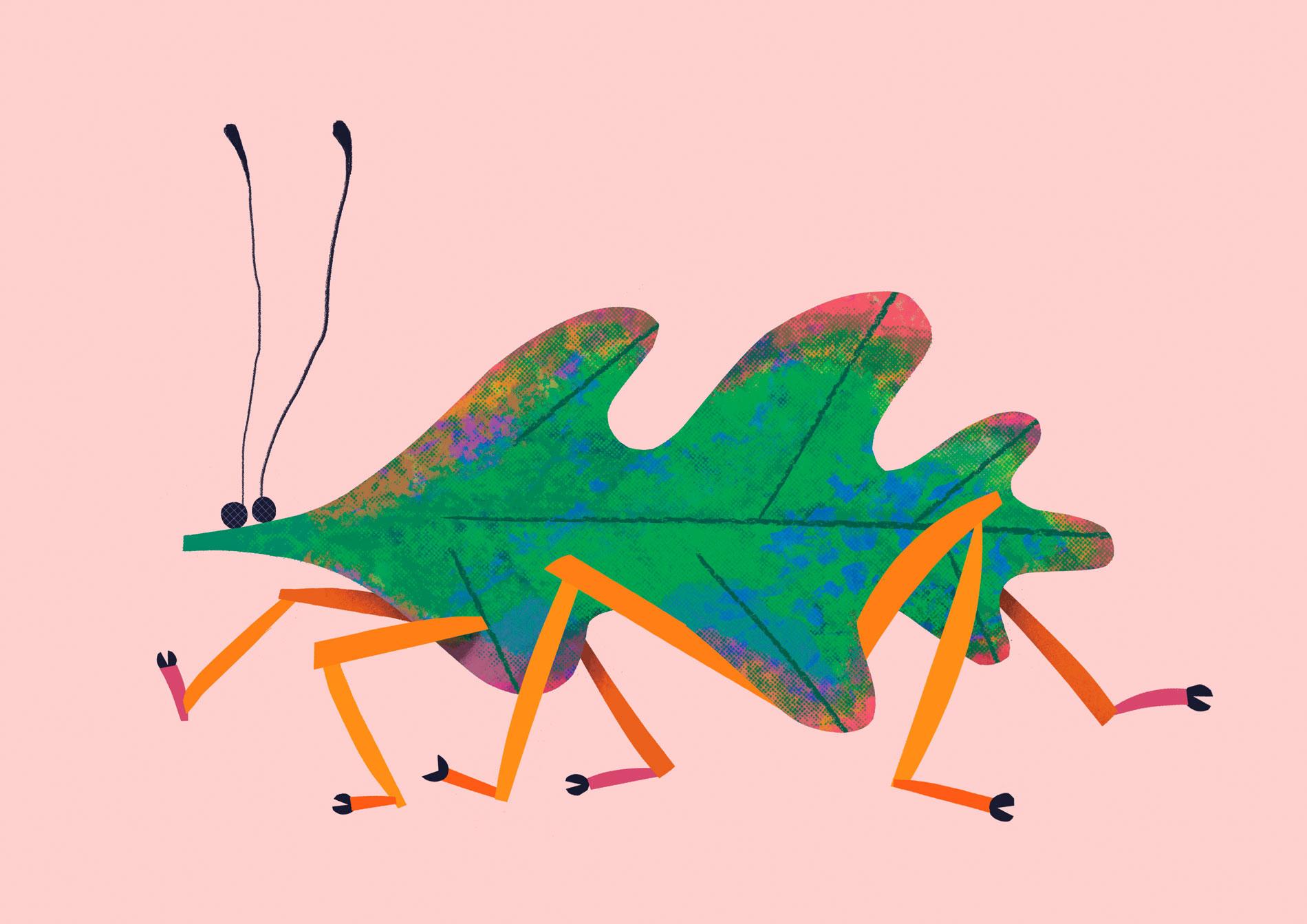 leaf-insect-by-Natasha-Durley.jpg