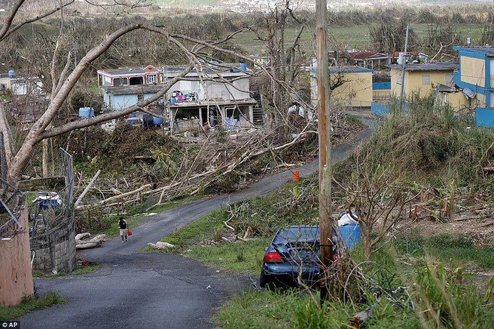 Yabucoa Puerto Rico.jpg