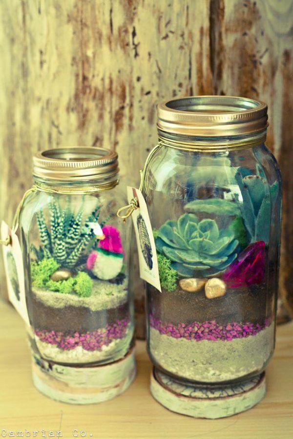 mason jar succulent.jpg