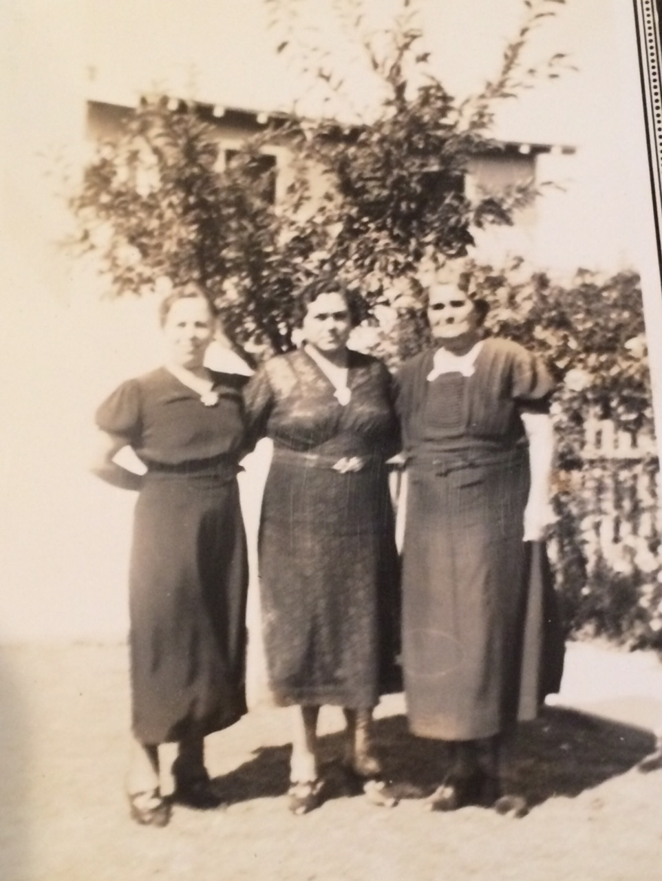 "Some of the ""coven."" My great-grandmother is in the center."