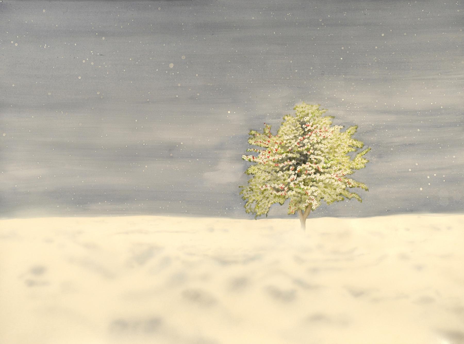 Joseph's Tree