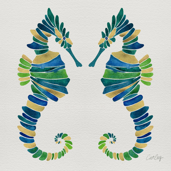 Seahorse available  here .