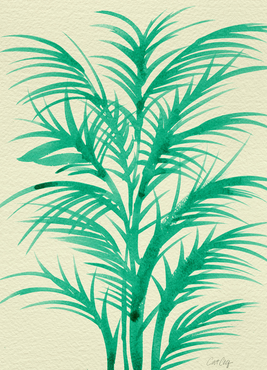 Mint Palms available  here .
