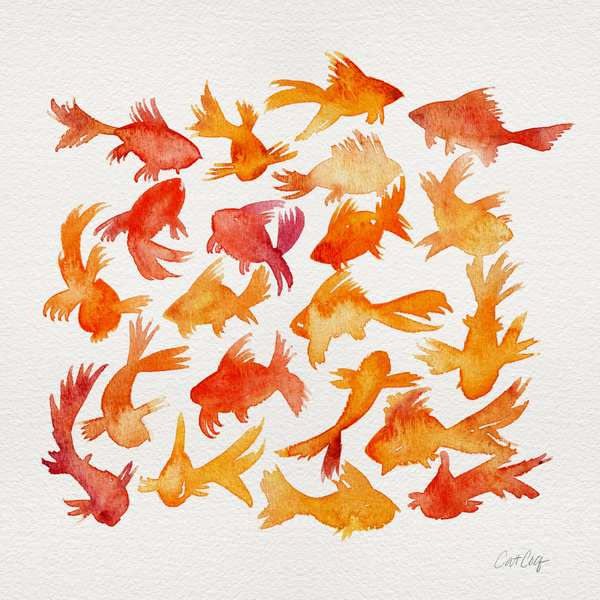 Goldfish available  here .