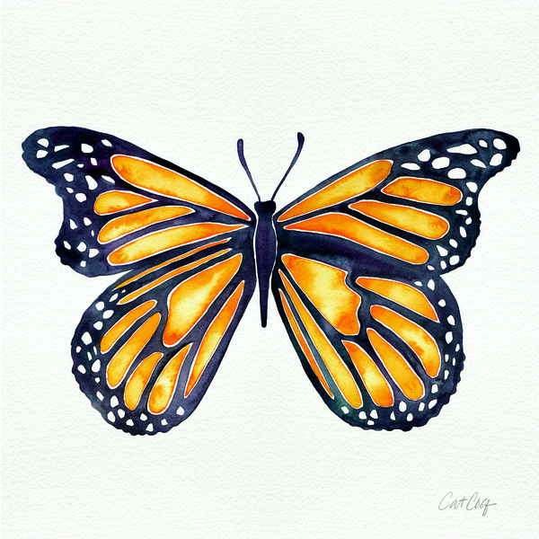 Monarch Butterfly available  here .