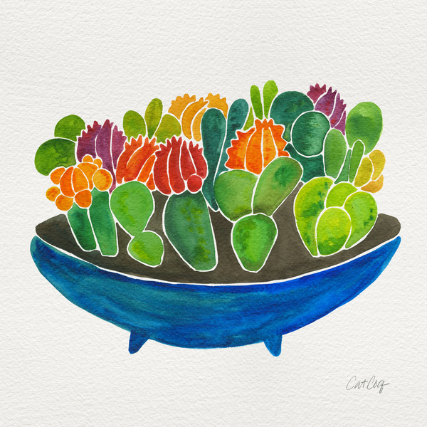 Succulents available  here .