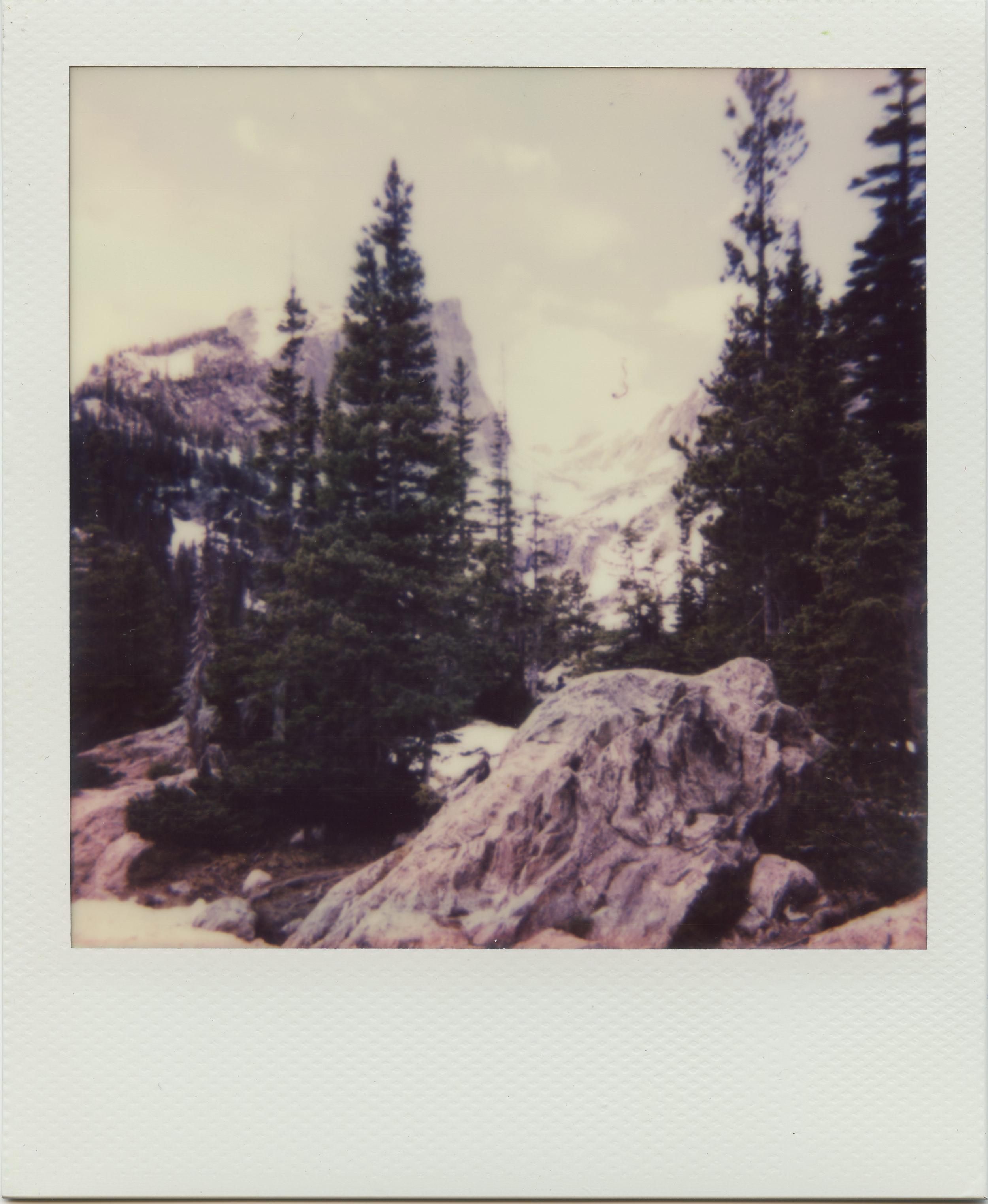Polaroid-BearLakeTrail.jpg