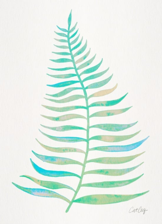 Palm Leaf available  here .