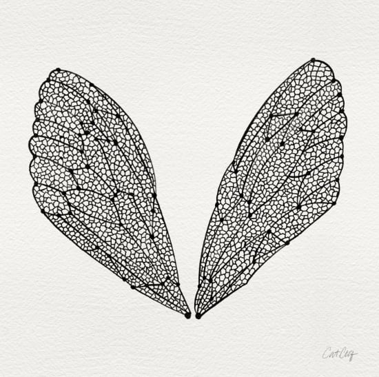 Cicada Wings available  here .