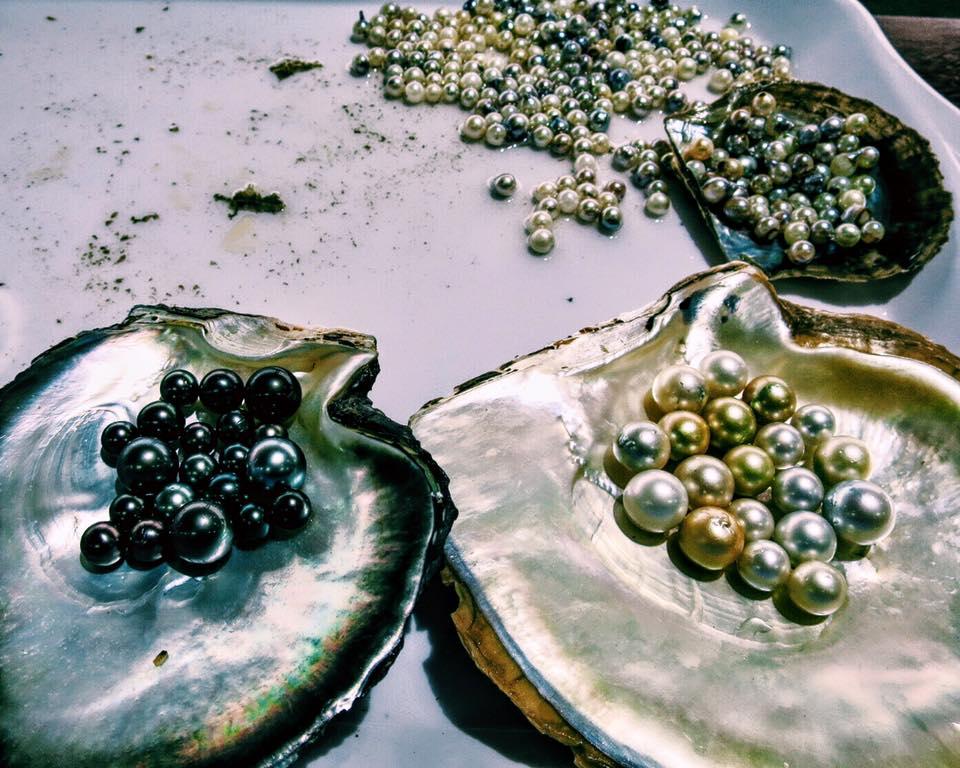 The gems of Ha Long Bay, Vietnam.