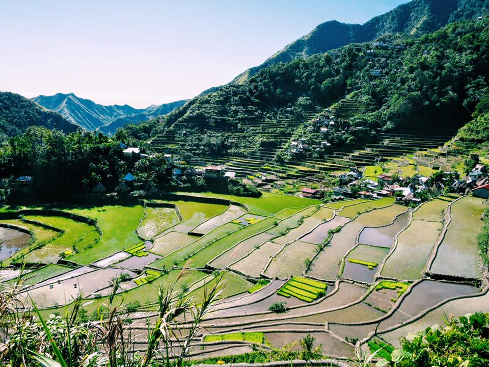Batad Rice Terraces. After a day & a half of hiking, we were rewarded with this epic view.