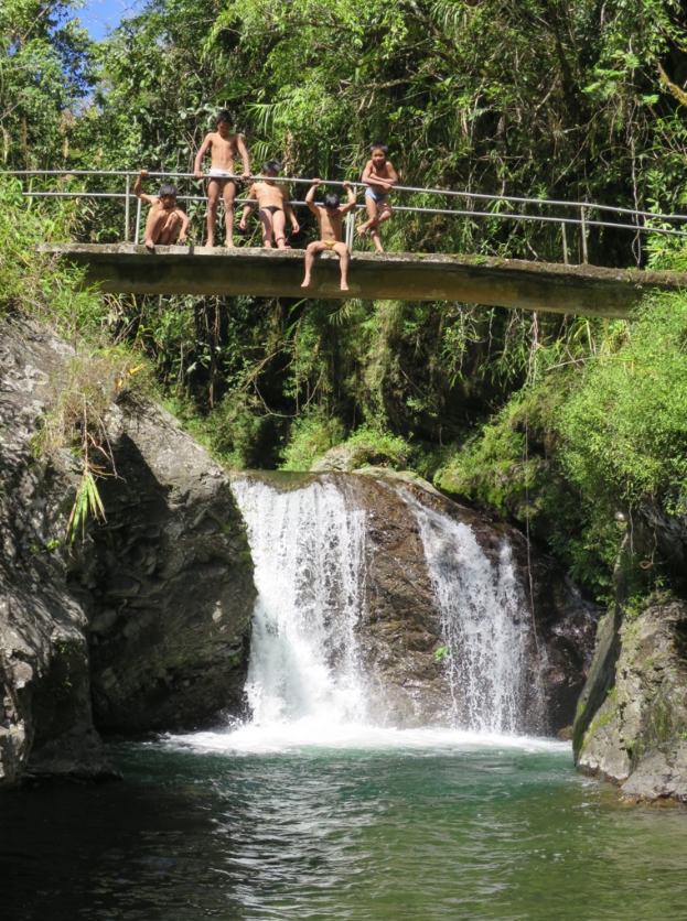 Little boys showing off at a waterfall.