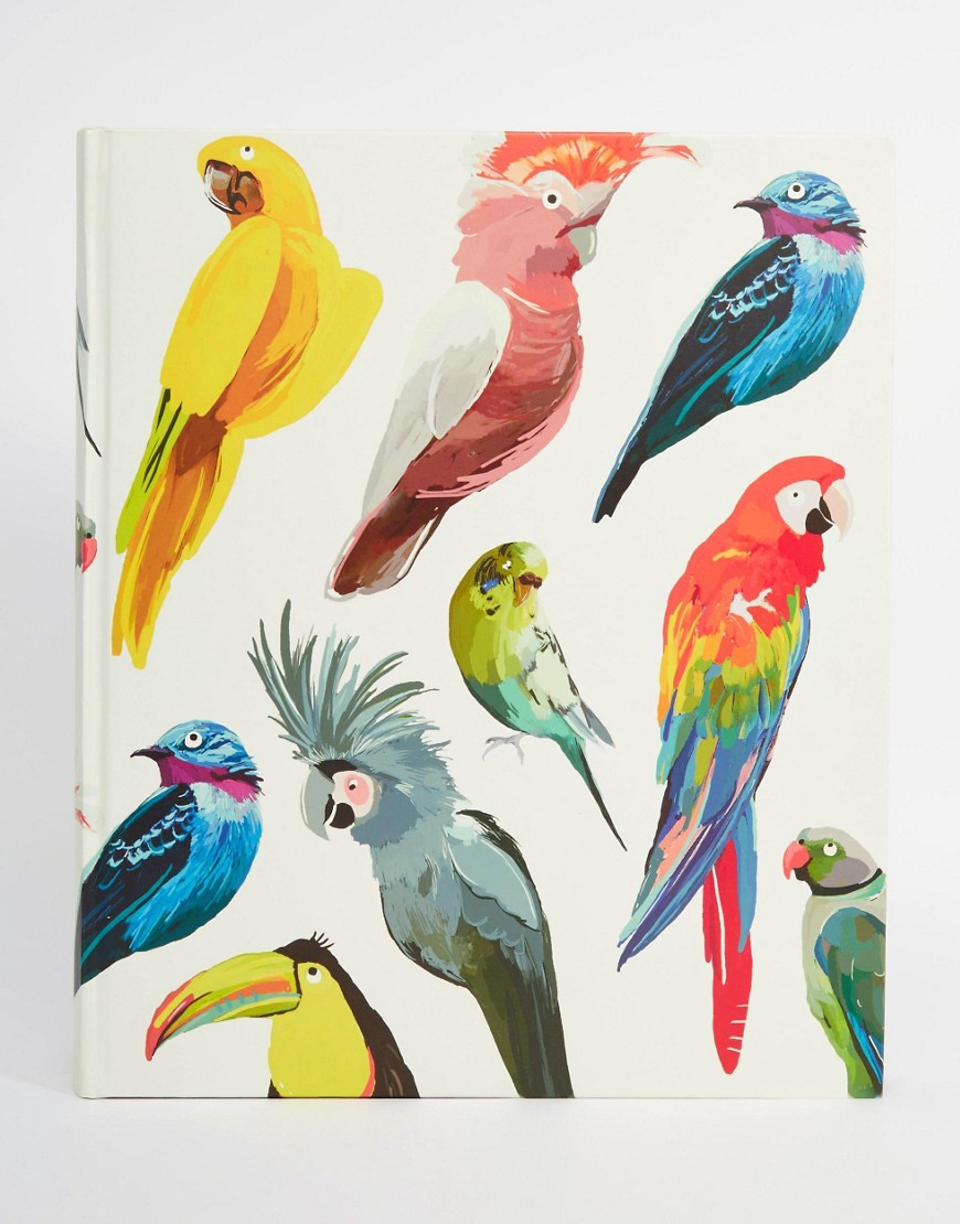 Paperchase Let's Squawk Bird Large Album  • ASOS
