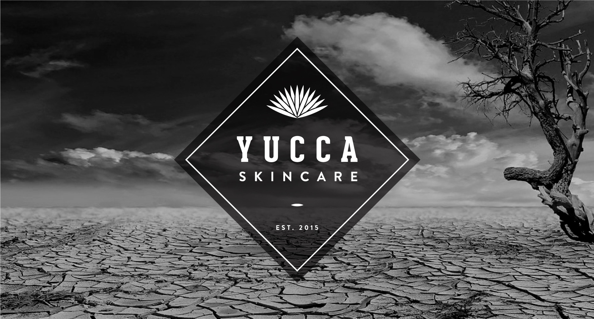 Yucca-Web-1.jpg