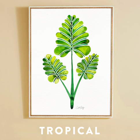Collections-Tropical.jpg