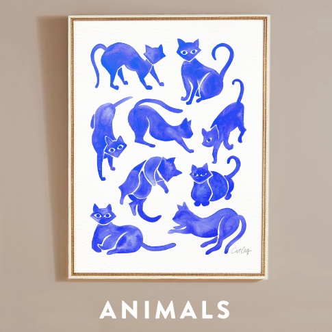 Collections-Animals.jpg