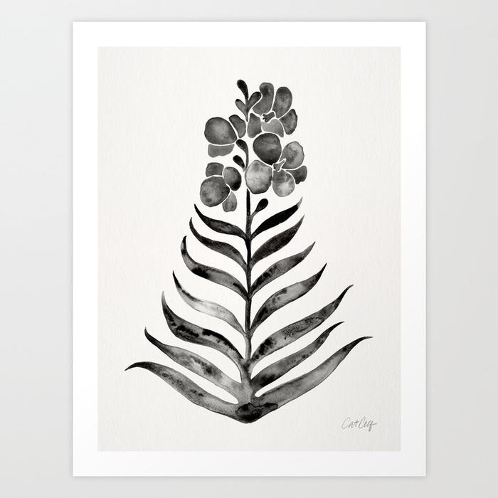 blooming-black-orchid-prints.jpg