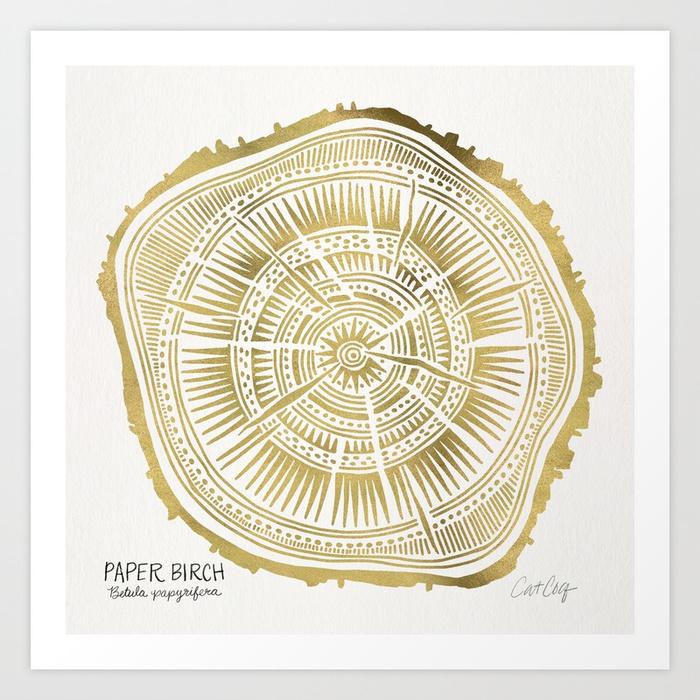 paper-birch--gold-tree-rings-prints.jpg