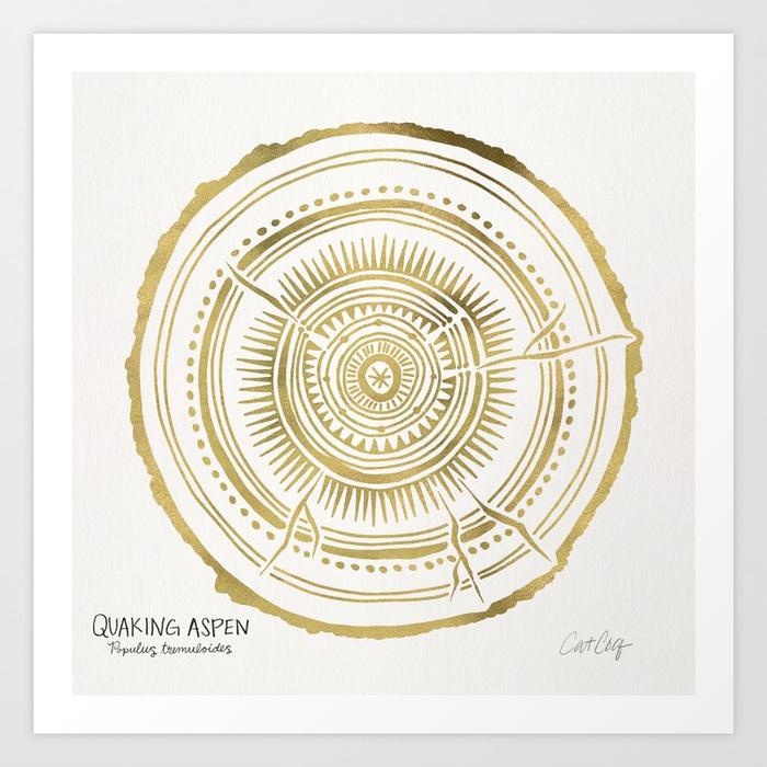 quaking-aspen-gold-tree-rings-prints.jpg