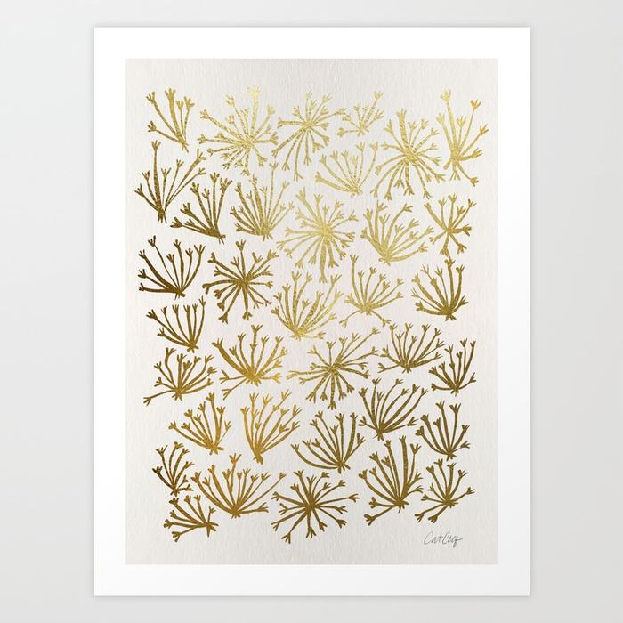 queen-annes-lace-2-rsj-prints.jpg
