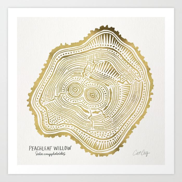 peachleaf-willow--gold-tree-rings-prints.jpg