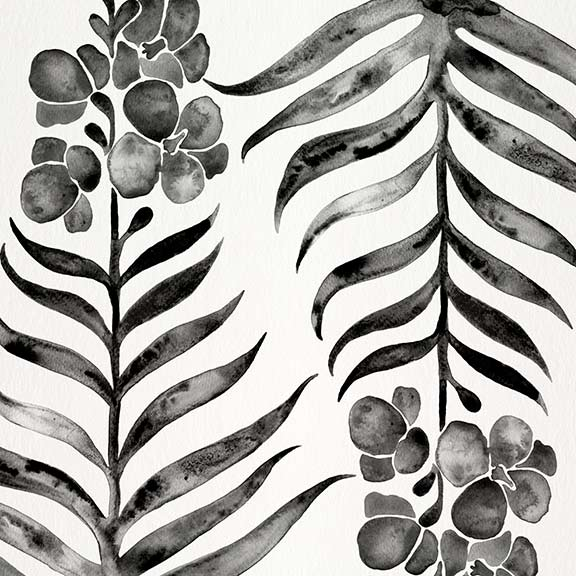 Black-OrchidBloom-pattern.jpg