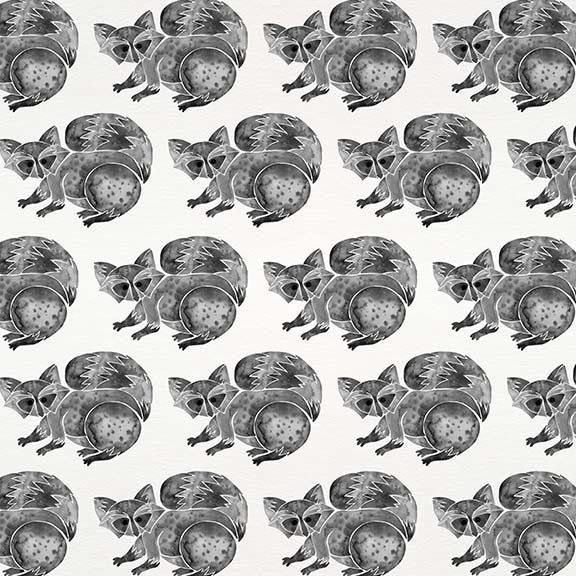 Black-Raccoon-pattern.jpg