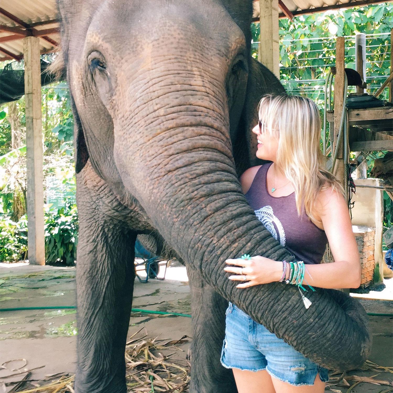 Pai-Elephant.jpg