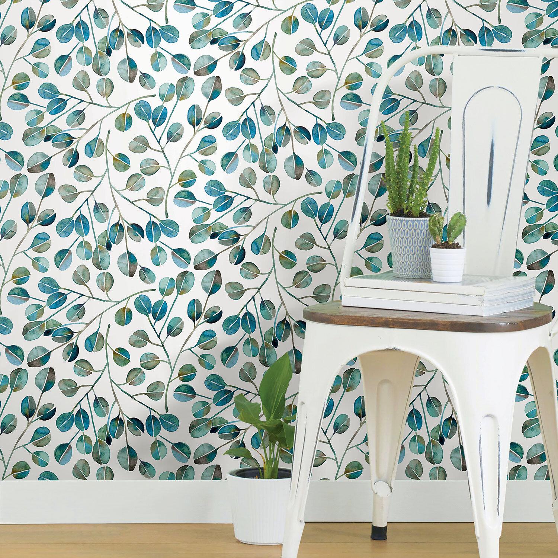 Blue Eucalyptus  – $39.99