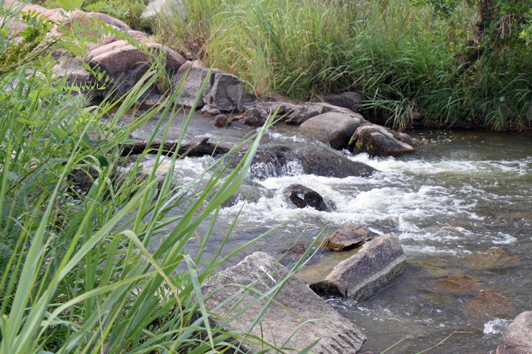 Llano River Scenery