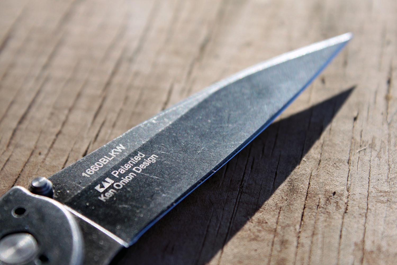 Kershaw Leek Blade