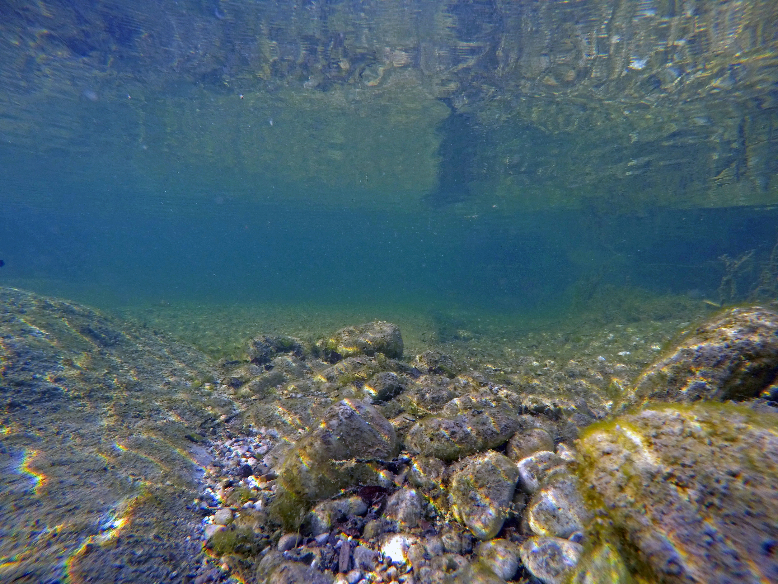 Underwater Shot of the Devils River