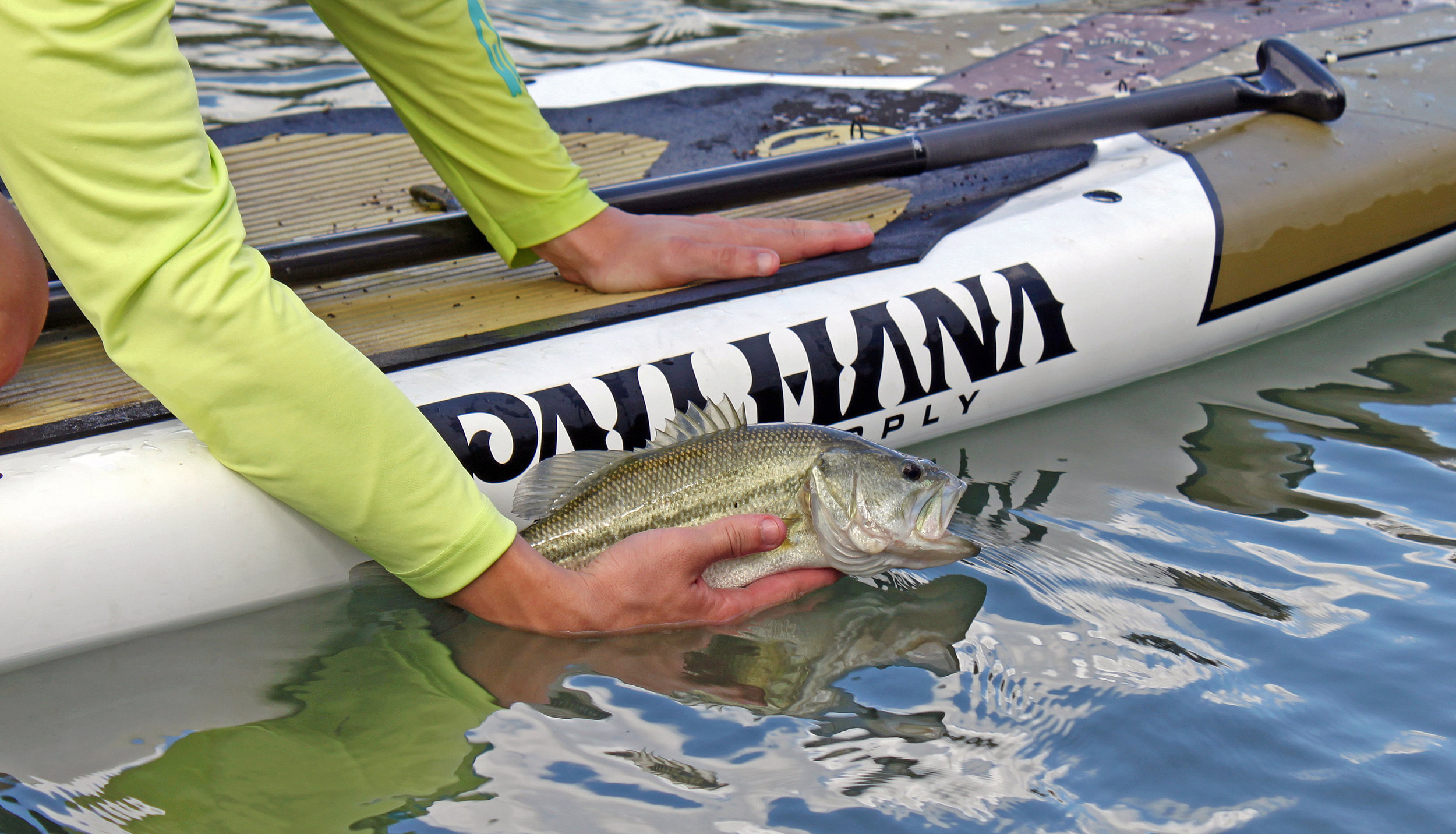 Largemouth Bass Pau Hana Endurance Paddleboard South Llano River