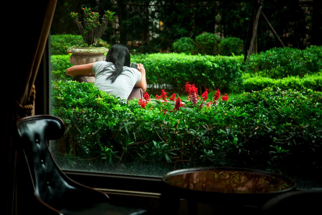 Secret Garden.png
