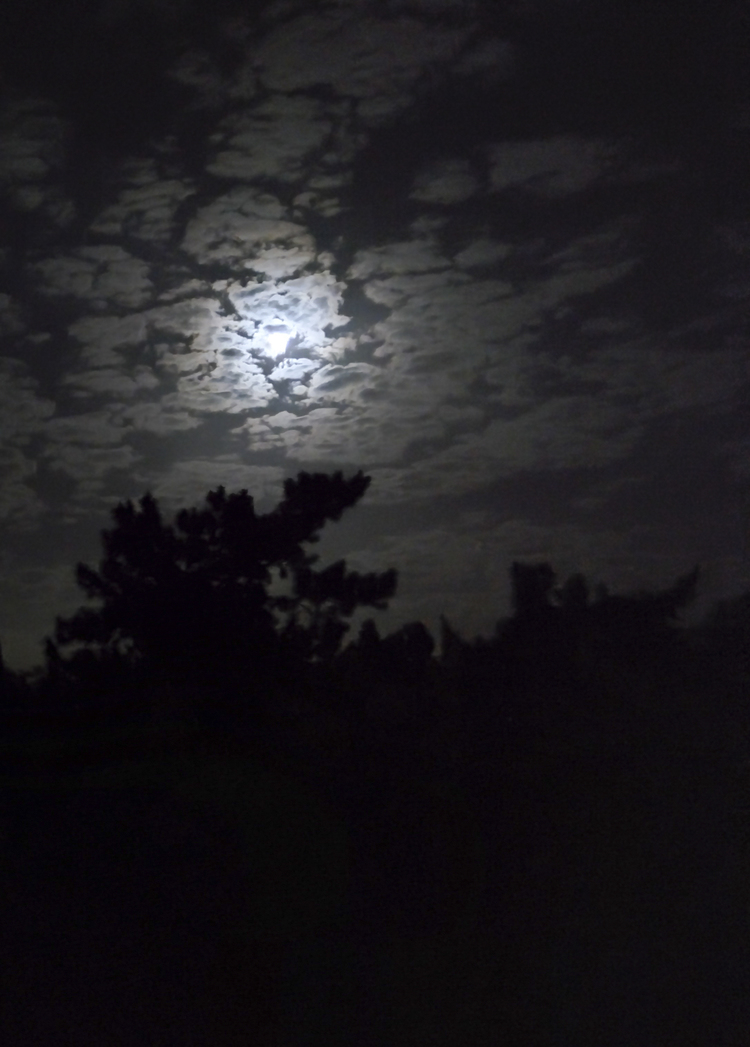 Chelsea Hipley  -The night felt peaceful and serene with the beautiful moonlight coming through the clouds. A great ending to another great weekend.