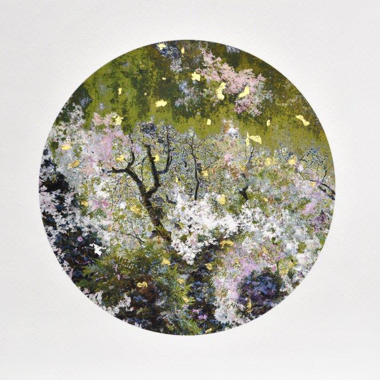 """Gabriela Garcia-Luna, """"Garden of Skin"""", photograph, archival ink on rag, birch board, gold lead, 8 x 8"""", 2018"""