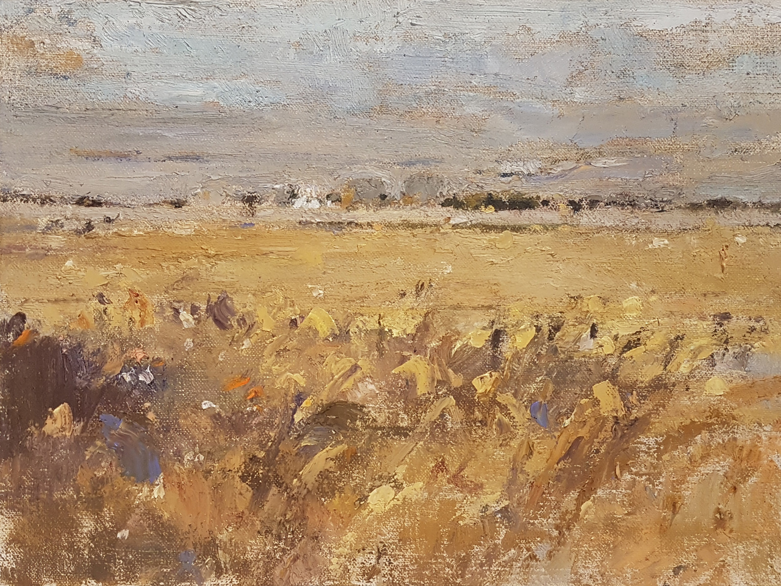 "Clint Hunker, ""After Harvest, Slough Road"", 2018, Oil on linen, 10"" x 13"""