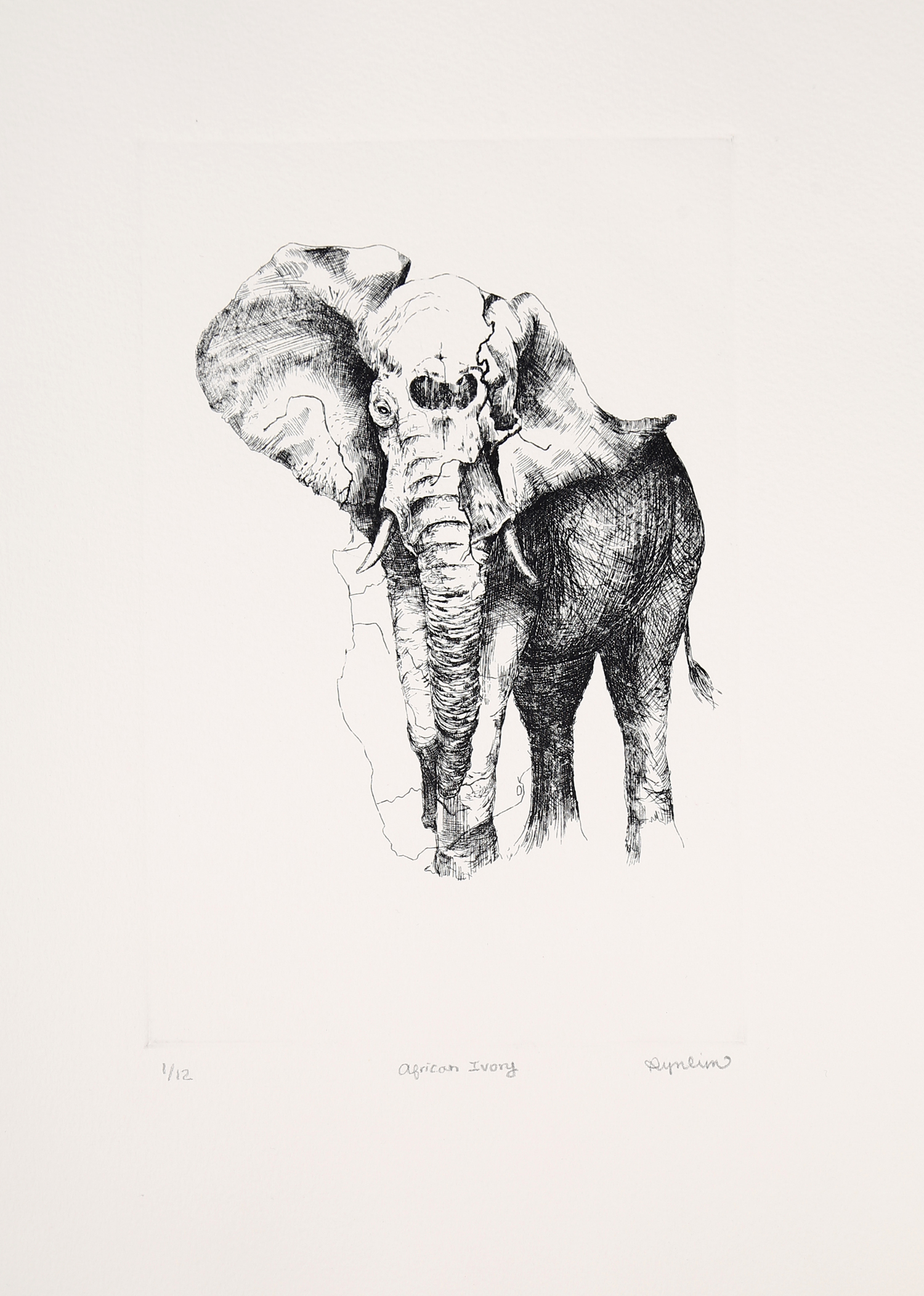 "Ryn Lim, South Korea, ""African Ivory"", ink on paper, 22.4x14.5"", 2015"