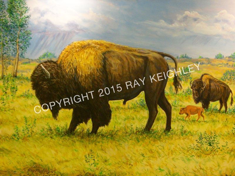 Buffalo Summer by Ray Keighley, 54x36 acrylic on canvas, $2500 (framed)