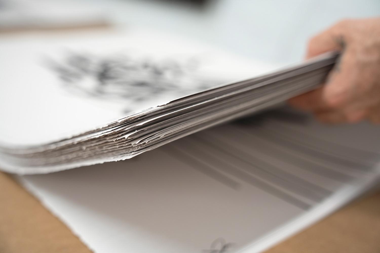 Bisco-Smith-MTWK-Prints-2.jpg