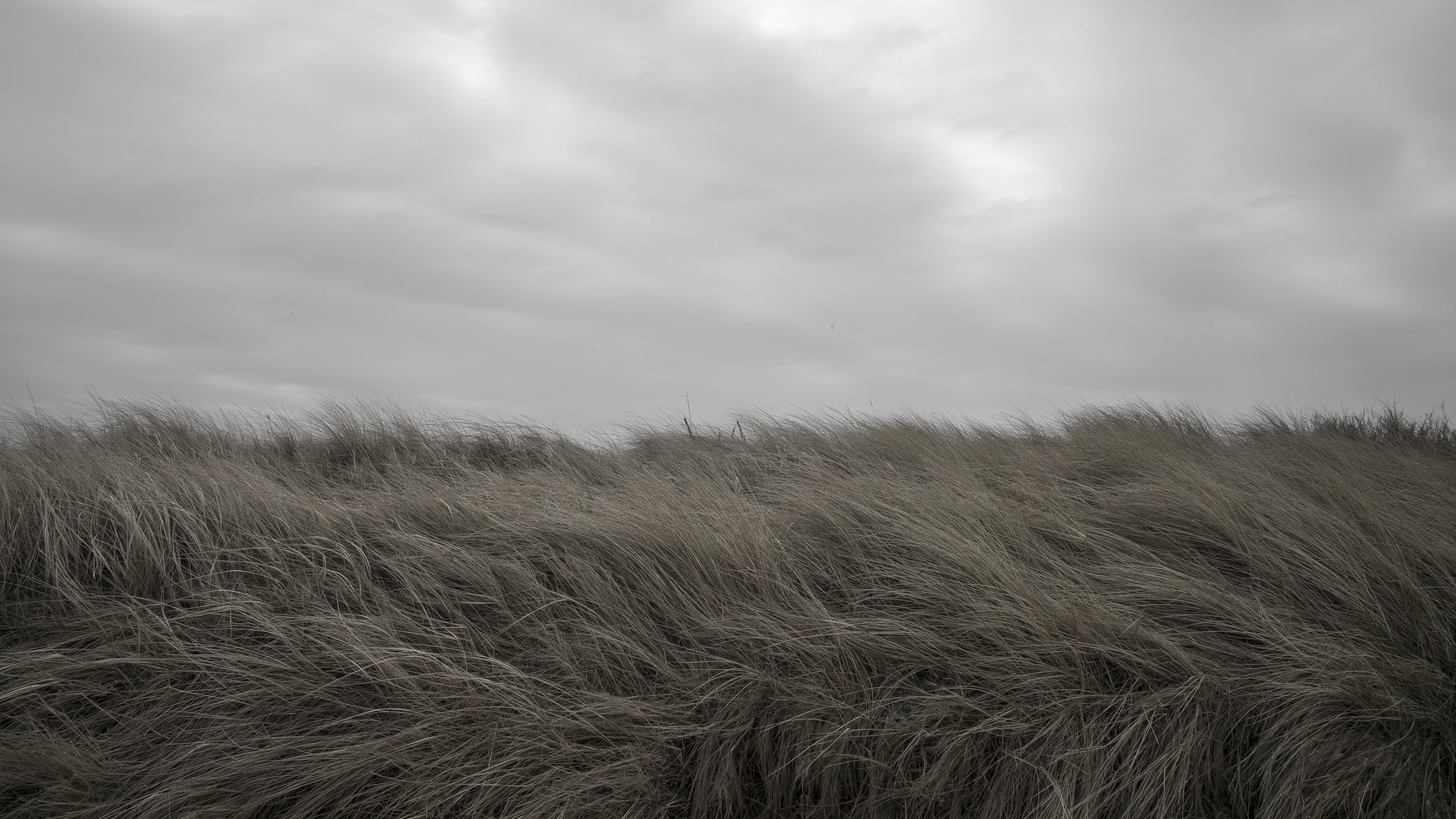 L1000136-the north sea 3.jpg