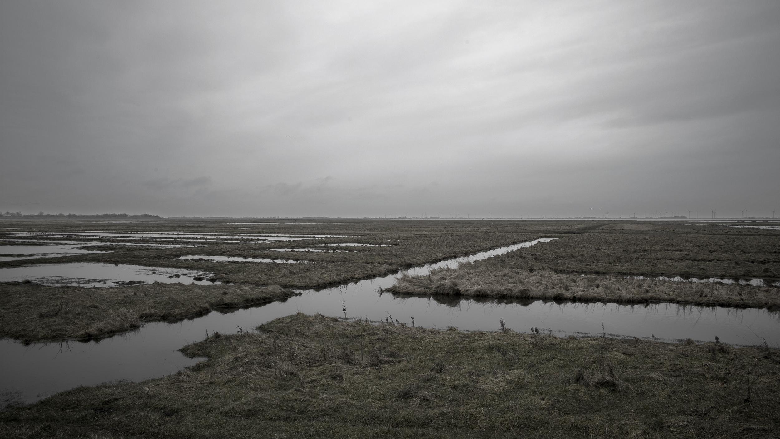 L1000186-the north sea 4.jpg