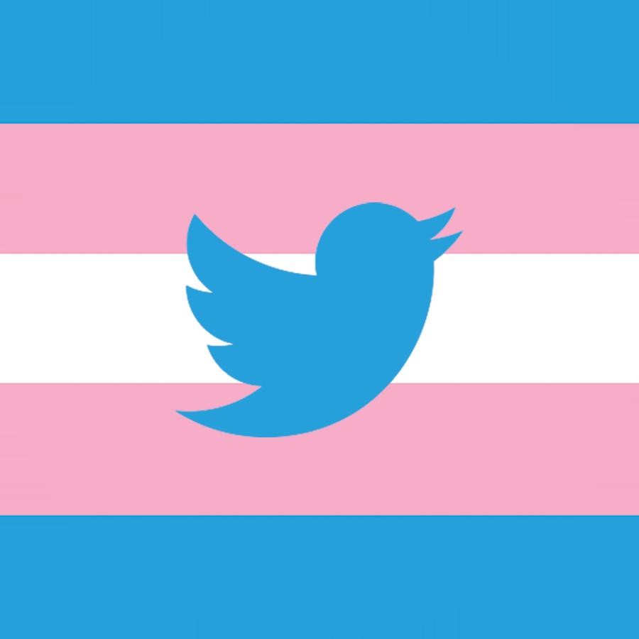 Twitter-Trans-Flag-rgb.png