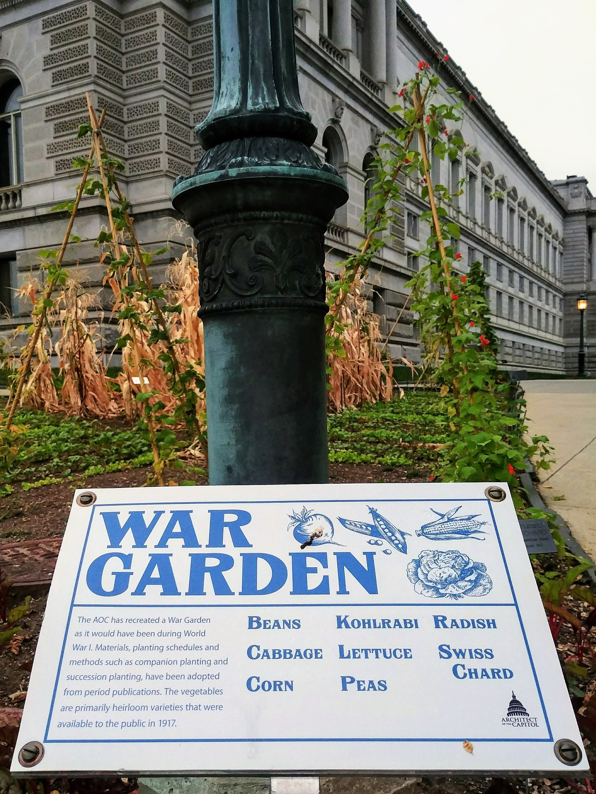 Find gardens on the southwest, southeast, and northwest corners of the Library grounds.