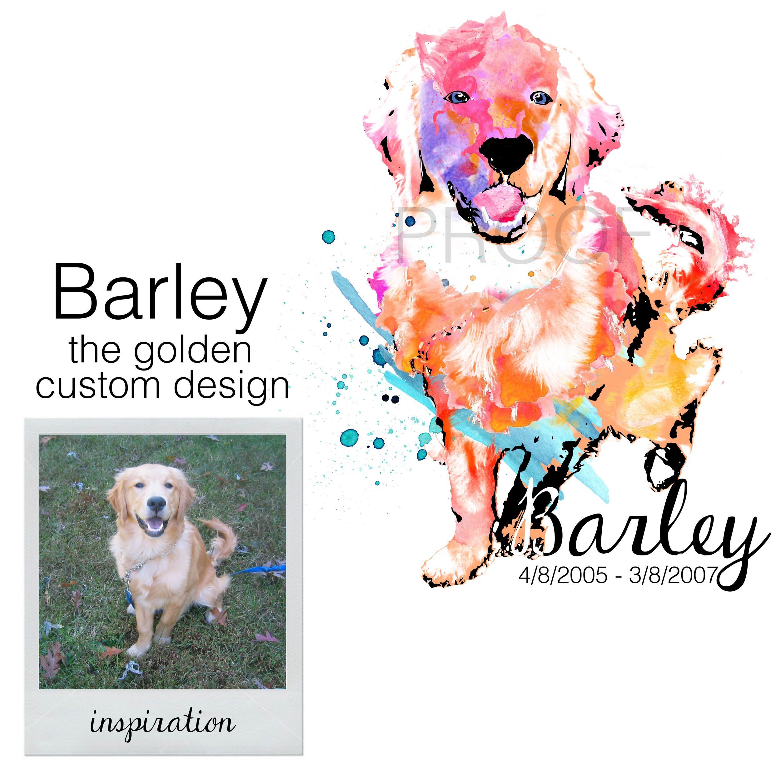 custom-example-barley.jpg