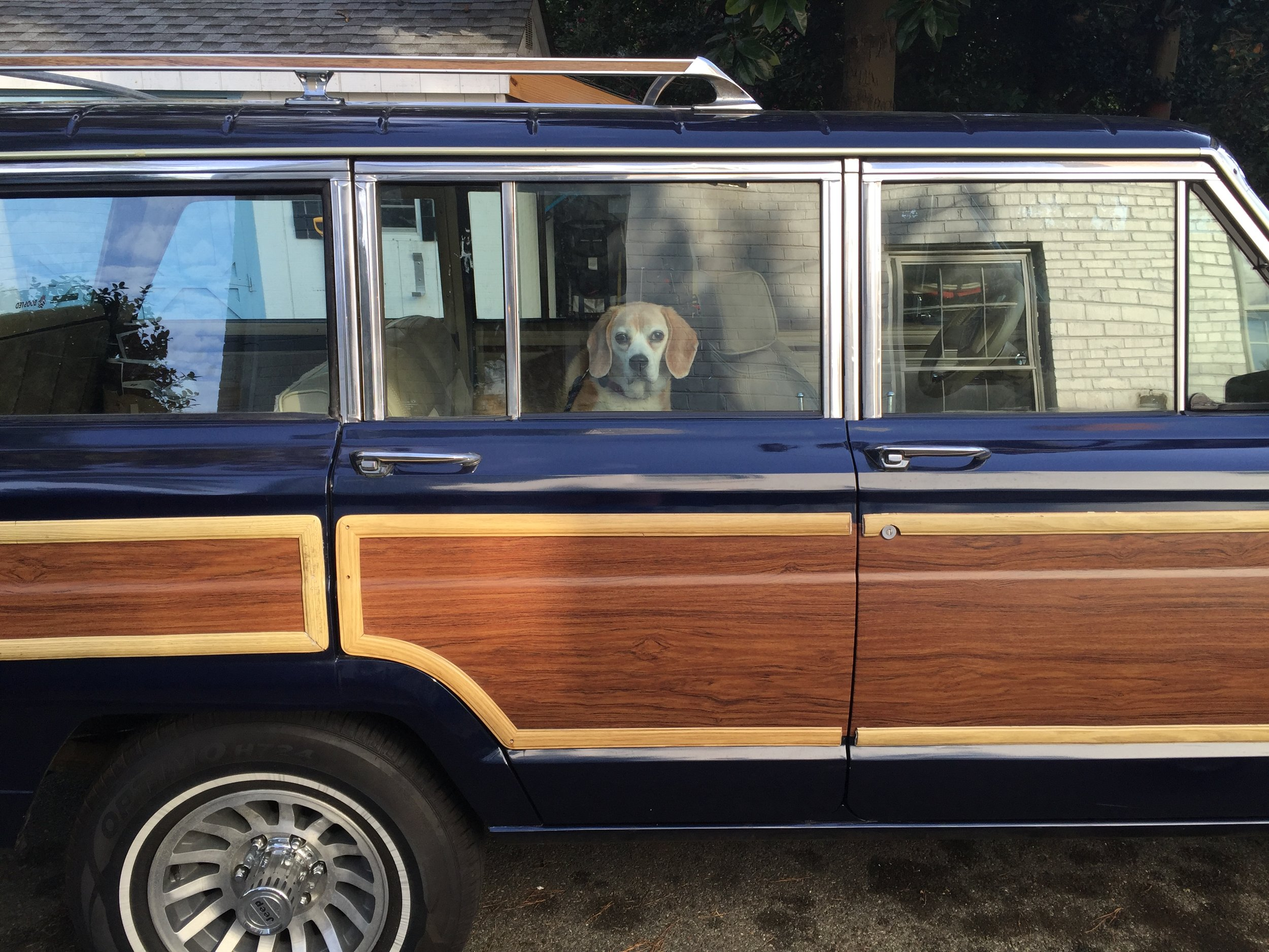 Dogs and Wagoneers, Like PB&J