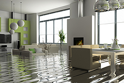 WATER DAMAGE >>